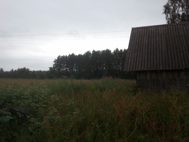 field behind barns
