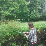 Freek cutting hedge