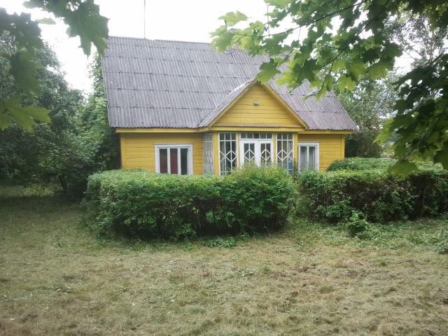 house & hedge