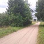 driveway 5