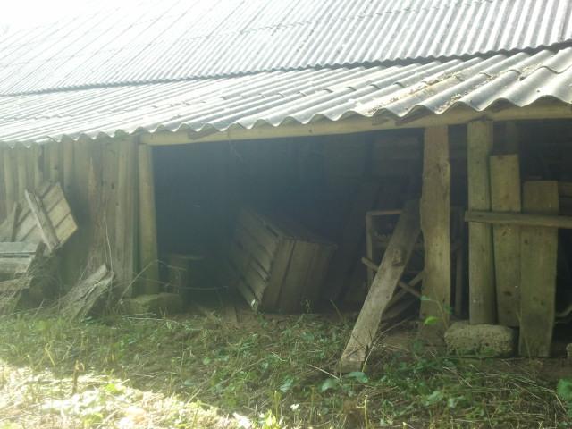 Backside barns 6