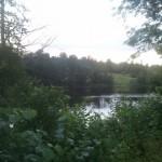 Island lake 4