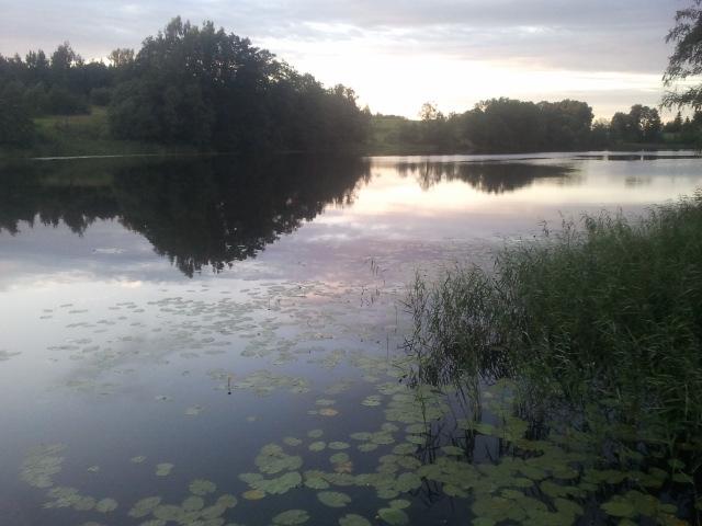 Island lake 2