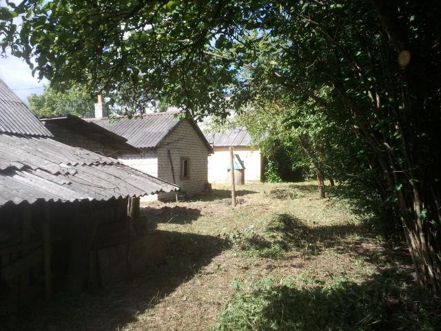 Barns backside