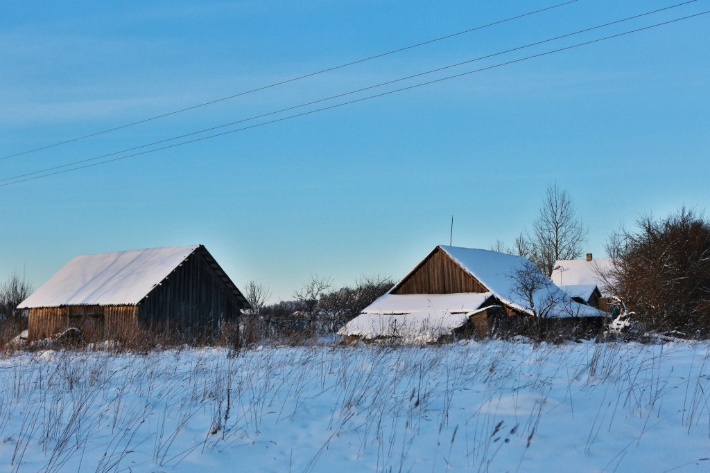 Barns in snow 01/2013