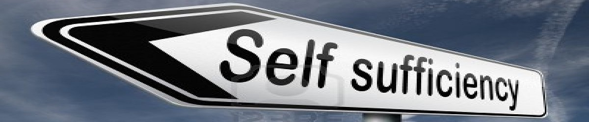 how to become self sufficient