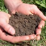 soiltest2