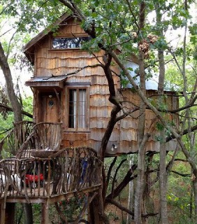 Dan Philips Treehouse