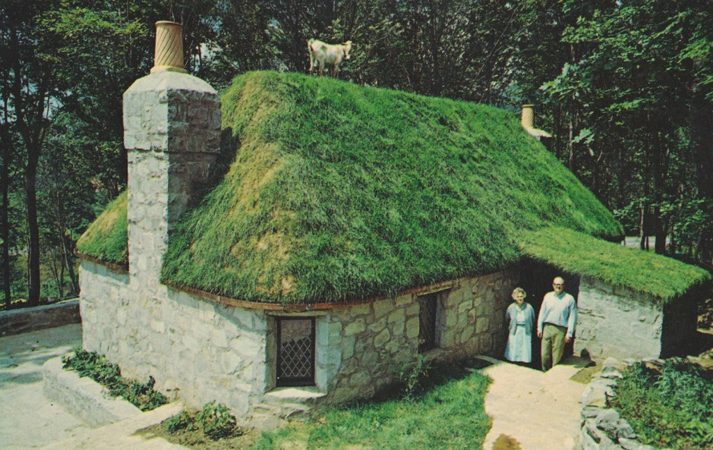 Goat House Green Roof Izreal