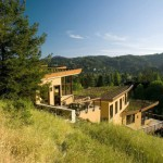 Mill Valley Green roof