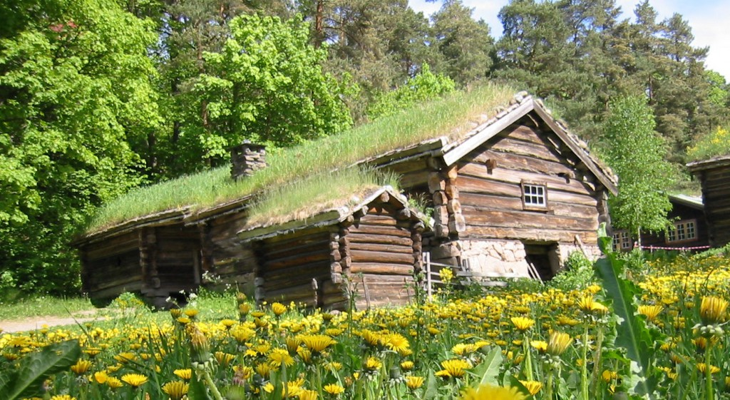 Norsk folke museum Green roof