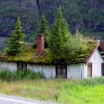 Norwegian Green Roof