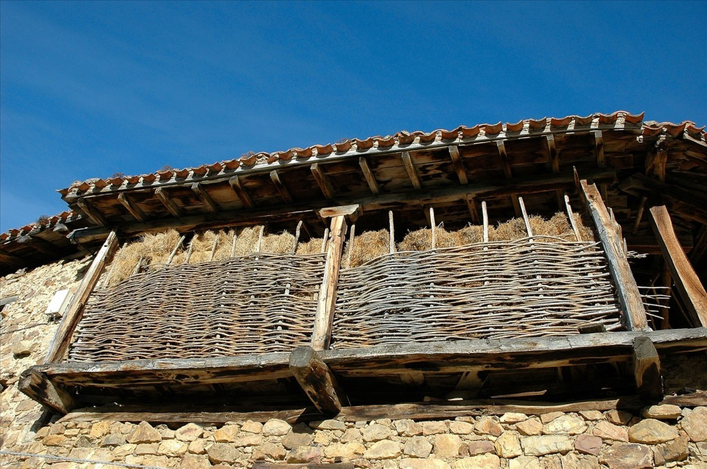 Mogrovejo Camaleno Cantabria
