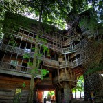 The-Worlds-Biggest-Tree-House-by-Horace-Burgess-21