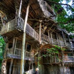 The-Worlds-Biggest-Tree-House-by-Horace-Burgess-27