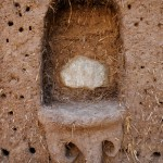cob_house_decorative_features_23